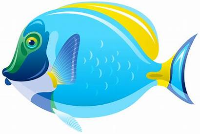 Fish Clipart Transparent Clip Fishes Underwater Water