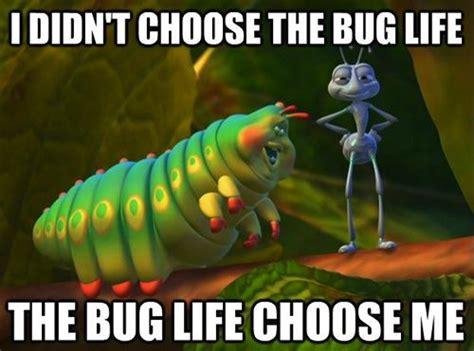 Bug Memes - 20 best i didn t choose the thug life memes smosh