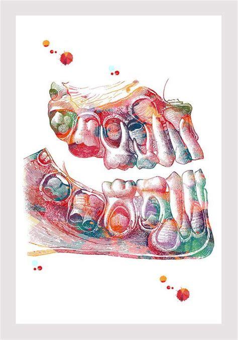 children teeth art print deciduous teeth watercolor dental