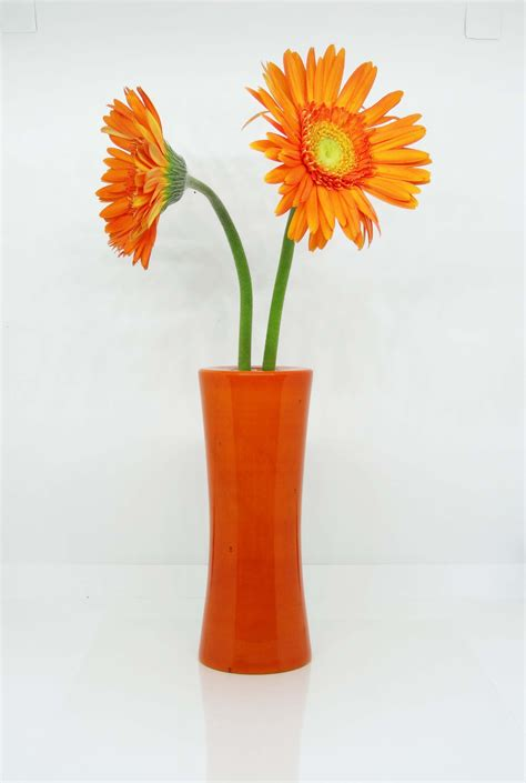 Flowers For Vase by Wooden Flower Vase Orange Livecrafts