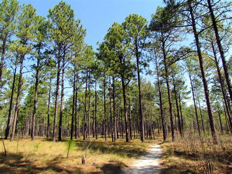 600 Valley View Road Southern Pines North Carolina