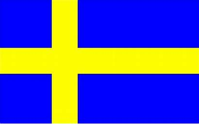 Swedish Market Systembolaget Successfully Penetrate Understanding Flag