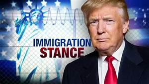 The Immigration Landscape Under Trump Presidency