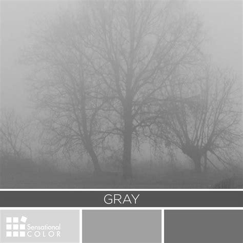 gray color palette sensational color