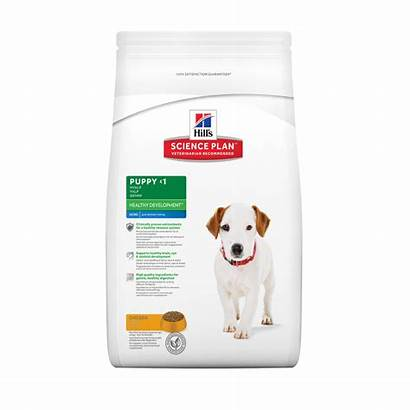 Puppy Hills Healthy Development Pollo Canine Poulet