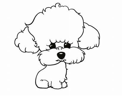 Dibujo Cachorro Perros Poodle Visitar Colorear Silueta