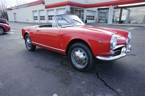 1965 Alfa Romeo Spider by Purchase Used 1965 Alfa Romeo Spider Giulia Spider In