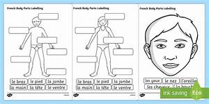French Body Parts Labeling Worksheet