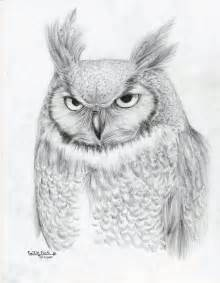 Great Horned Owl Drawings