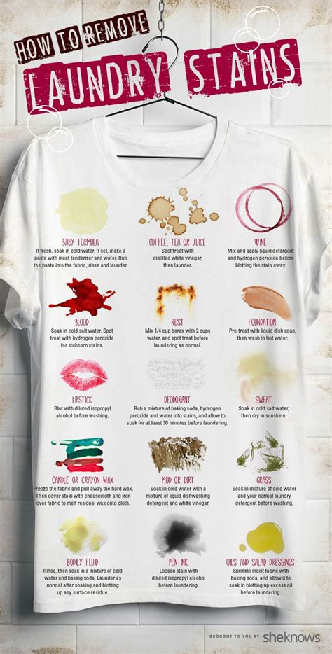 how to remove stains 25 best ideas about stain removal clothing on pinterest stains stain removers and stain