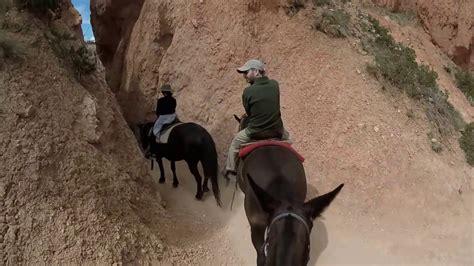 riding horseback bryce canyon park national