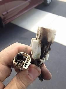 Burnt Wiring Harness Please Help