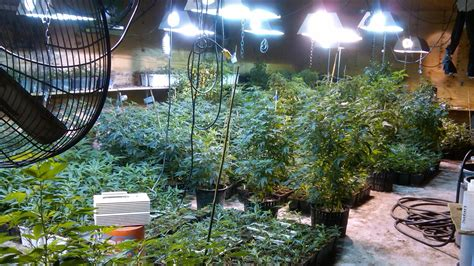 weeds   life scarsdale mom arrested  massive