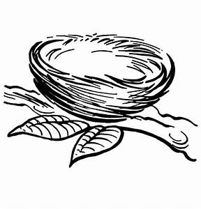 Empty Bird Nest Coloring Page Coloring Pages