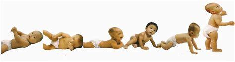 Janin 7 Bulan Lahir Berat Badan Ideal Bayi 9 Bulan Dalam Kandungan