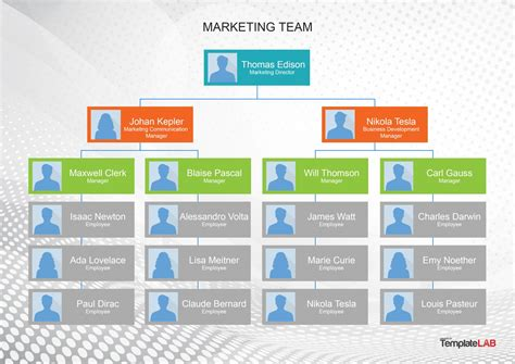 organizational chart templates word excel powerpoint