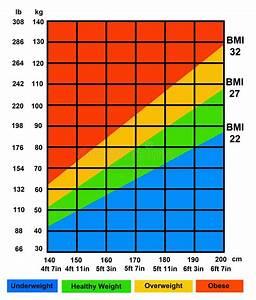 Dübel Gewicht Tabelle : bmi stock illustration image of kilogram mass ~ Watch28wear.com Haus und Dekorationen