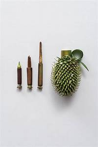 Harmless weapons made of plants by sonia rentsch colossal for Harmless weapons made of plants by sonia rentsch