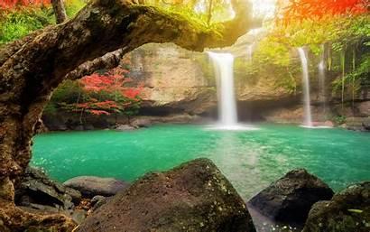 Tropical Waterfall Jungle Island Rainforest Lake Forest