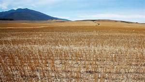 Drought-stricken Cape Town, South Africa, could run out of ...