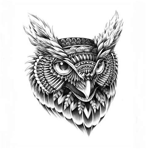 bioworkz highly detailed illustrations feather