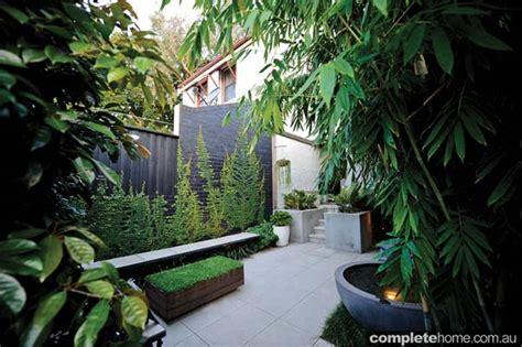 Inner City Courtyard Garden Design