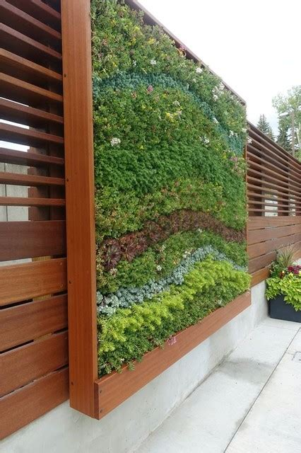 sedum outdoor living wall