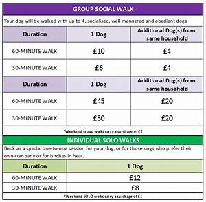 Walking the dog dog walking service north east for Dog home boarding prices