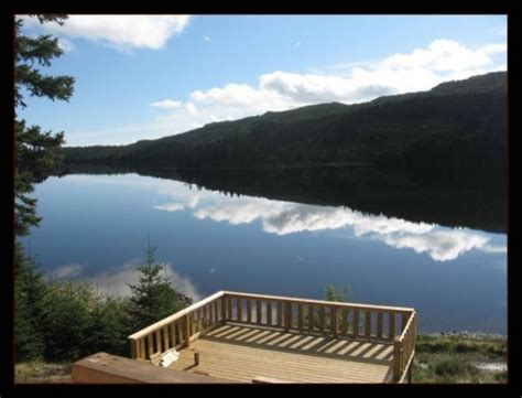 bank owned properties for sale in newfoundland homes and