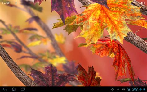 mania apk  autumn tree  wallpaper  apk