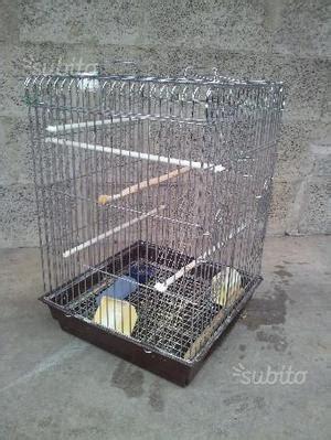 gabbie usate per pappagalli gabbie grandi x pappagalli merli uccelli di taglia posot
