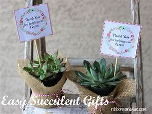 Easy Succulent Gift Idea with Printable