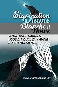 Signification Plume Noire : signification plume blanche et noire ~ Carolinahurricanesstore.com Idées de Décoration