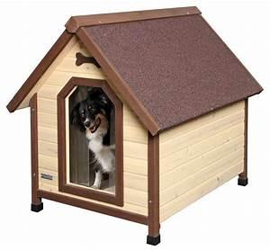 Niche D Intérieur Pour Chien : niche isol e pour chien niches pour chien ~ Dallasstarsshop.com Idées de Décoration