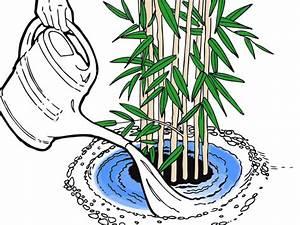 Was Kann Man In Ein Gewächshaus Pflanzen : wann kann man rosen pflanzen rosen umpflanzen wann und ~ Articles-book.com Haus und Dekorationen