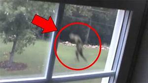 5 Mysterious Creatures Caught On Tape   Top 5 Strange