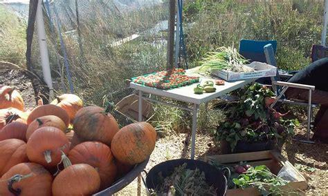 Home Decor Evanston Wy : Good To Grow Farms