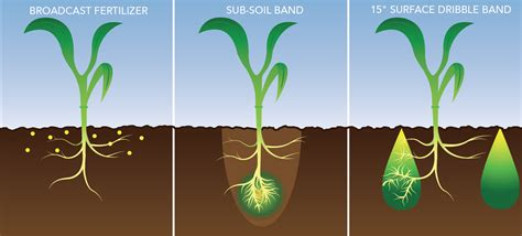 reviewing liquid suspension fertilizers liqui growcom