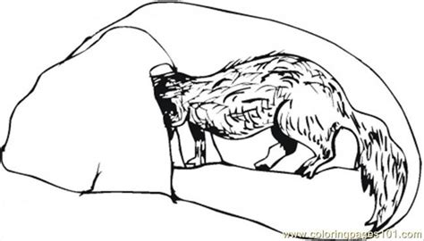 Cave Coloring Pages Sketch Coloring Page