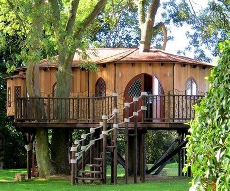 les plus belles maisons en bois belles maisons en bois dans les arbres
