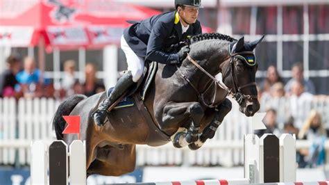 jumping horses breed horse breeds team