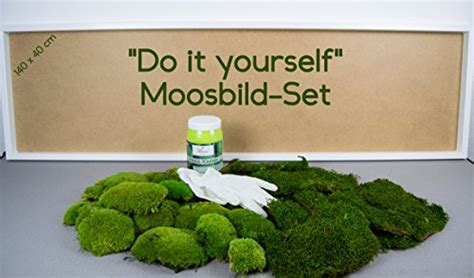moosbild selber machen diy moosbild selber machen wandbilder selber kleben moosbilder selbst gestalten do it yourself