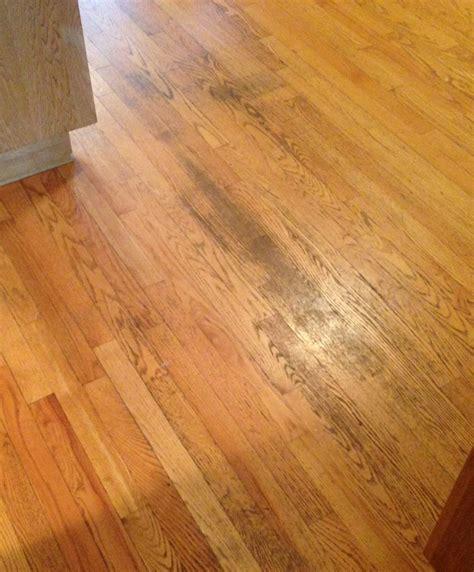 protecting wood floors from nails top 28 protecting wood floors from nails chair socks to protect your hardwood floors diy