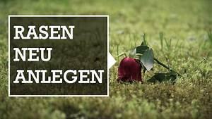 Rasen Neu Anlegen Ohne Umgraben : rasen neu anlegen gramina ~ Frokenaadalensverden.com Haus und Dekorationen