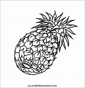 Pineapple Outline Picture | Outline Pictures | Pinterest ...