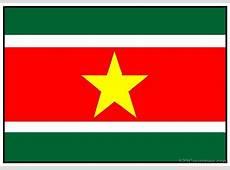 National Flag Of Suriname 123Countriescom