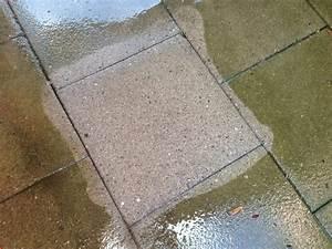 Reinigungsmittel Für Pflastersteine : reinigen der gartenplatten dreamlions ~ Yasmunasinghe.com Haus und Dekorationen
