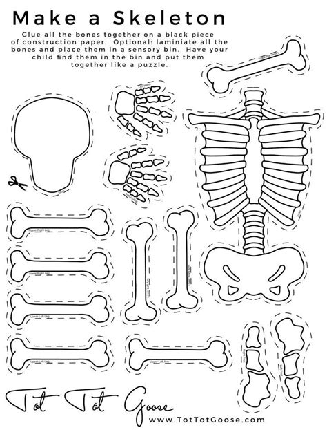 skeleton printable all about me theme preschool theme 680 | 463eec479ec97fb6a92b6e1e1ec6c044