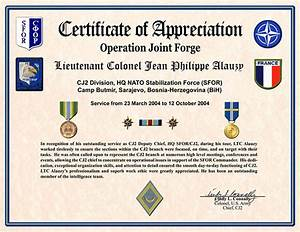 certificate of appreciation template 30 free word pdf With military certificates templates