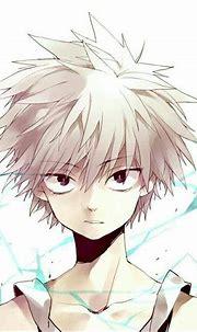 Killua Zoldyck | Wiki | ☆ Hunter x Hunter ☆ Amino